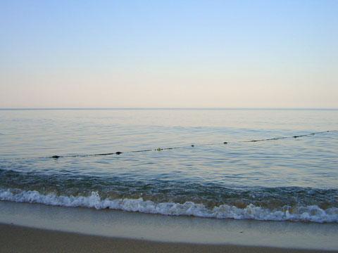 плажа на обзор